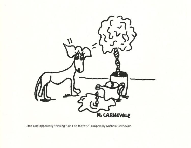 Carnevale thinking like a dog