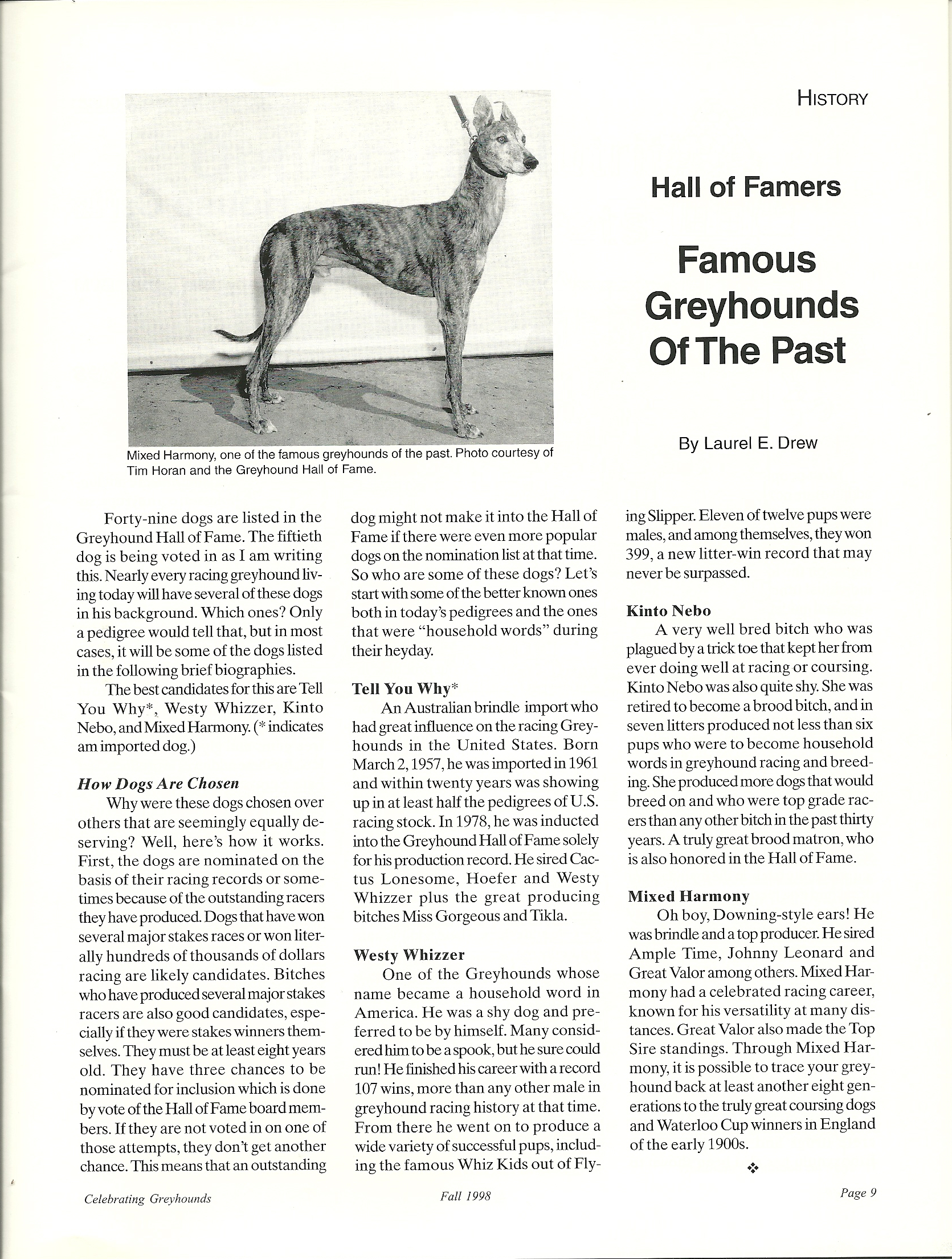 Famous Greyhounds of the Past | Greyhound Articles Online