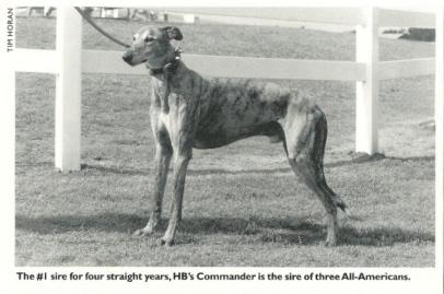 HB Commander